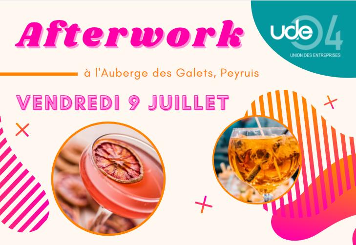 Soirée afterwork de réseau de l'UDE 04